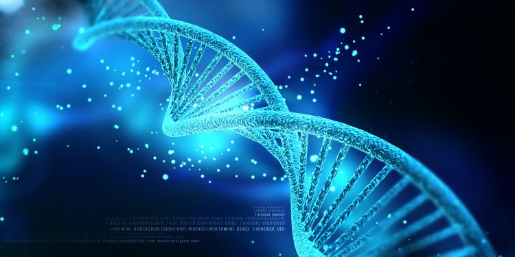 dna picture, gene, free image, creative commons, public domain